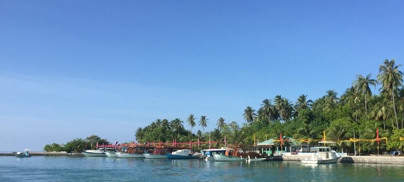 Solo in the Maldives – resort vs localisland